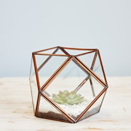 Large Geometric Glass Succulent Terrarium