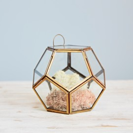 Small Geometric Glass Succulent Terrarium