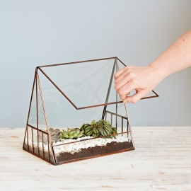 Large Glass Greenhouse Succulent Terrarium
